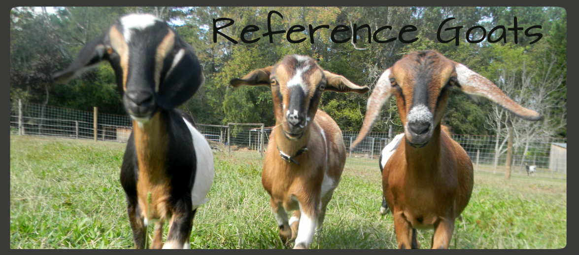 Reference Goats Banner